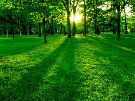 greenpark1024-x-768