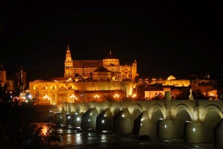 Mezquita-Catedral de Córdoba, vista nocturna desde el río