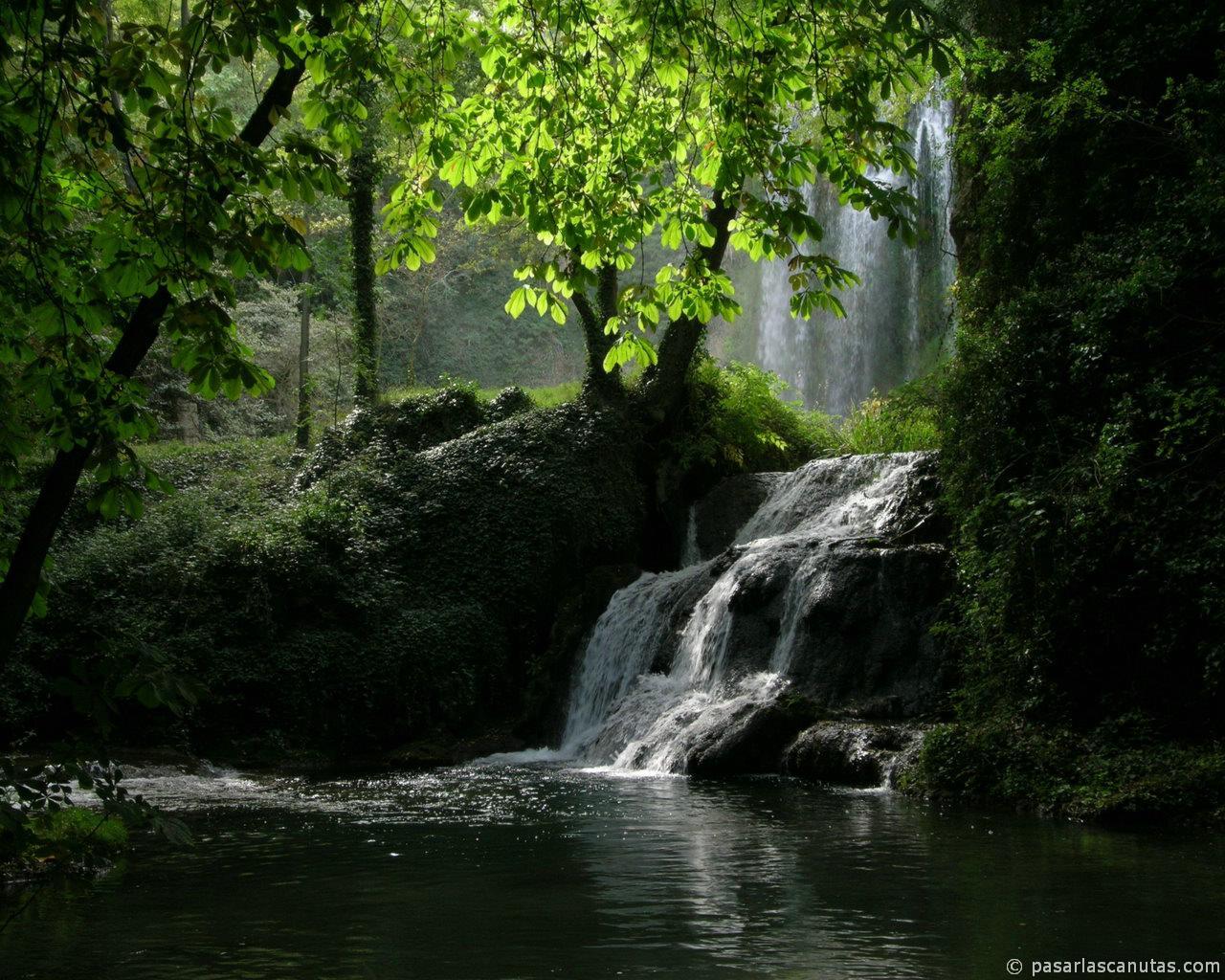 Resultado de imagen de renacer del agua y del espiritu