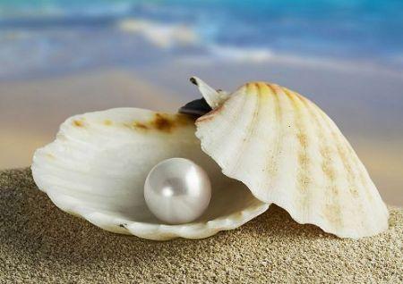 Al encontrar la perla de gran valor, vende todo lo que tiene y la compra