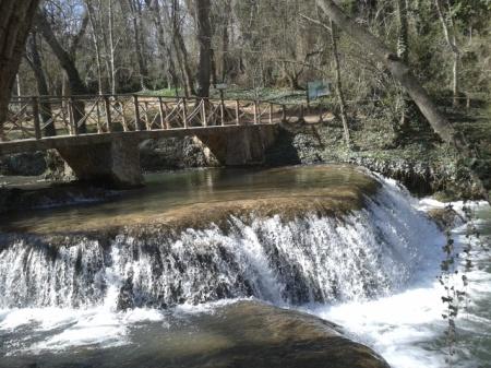 Como el agua de la lluvia produce efectos distintos en la naturaleza, así es el Espíritu Santo