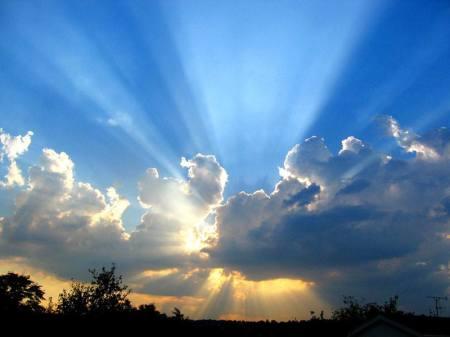 Que tu misericordia, Señor, venga sobre nosotros, como lo esperamos de tí.