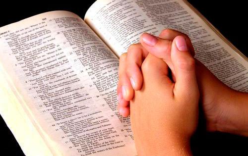Bibia y manos